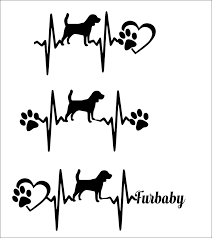 Dog Heartbeat Pattern