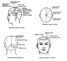 73 Inquisitive Acupuncture Diagrams
