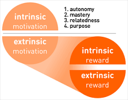 Intrinsic Vs. Extrinsic Rewards (And Their Differences From ...