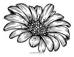 Small Picture Daisy Flower Coloring Pages free printable coloring page Daisy 6
