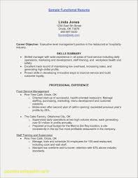 Functional Resume Template New Tech Resume Templates Inspirational