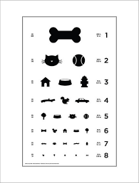 Snellen Chart Dimensions Pin On Design Milk Pets