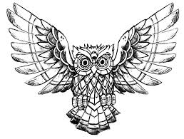 Small Picture Owl raw drawing Animals Coloring pages for adults JustColor