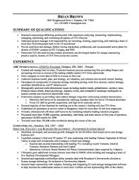Example Of A Professional Summary On A Resumes Huanyii Com