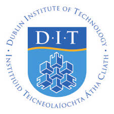 Dit Teaching Fellowship Reports 2012-2013