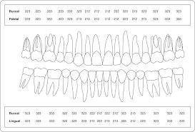 1 Examination And Diagnosis Pocket Dentistry