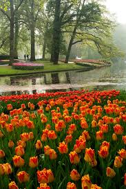 Small Picture 117 best KEUKENHOF GARDENS images on Pinterest Gardens