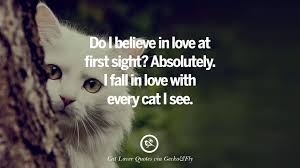 Image result for free quote on cats
