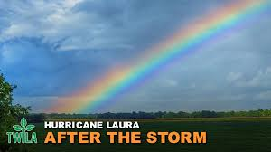 This Week In Louisiana Agriculture - Hurricane Laura -- After the Storm |  Facebook