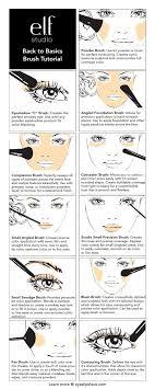 face brushes uses. e.l.f. cosmetics back to basics makeup brush tutorial face brushes uses f