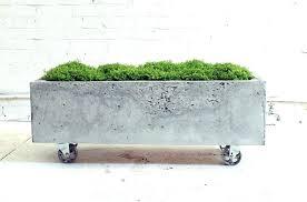 rectangular concrete planters concrete planter boxes popular homemade modern in concrete planter boxes concrete planter boxes