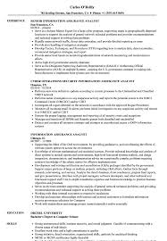 mcse resume samples information assurance analyst resume samples velvet jobs