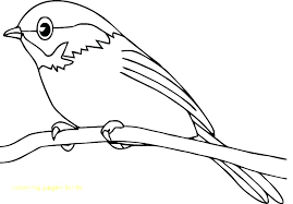 Free Bird Coloring Pages Printable Birds Animal Sh Awesome Bird