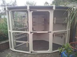 luxury corner cat enclosure