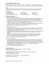 Resume Skill Samples 100 Best Of Image Of Resume Skills Examples Resume Concept Ideas 19