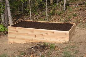 wood for raised vegetable garden and gardens bed elevated plans untreated pine beds best full