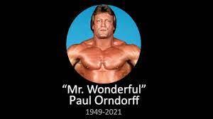 """WWE """"Mr Wonderful"""" Paul Orndorff ..."""