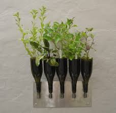 Kitchen Wall Herb Garden Wall Mounted Herb Garden Image Of Home Design Inspiration