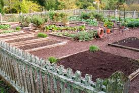 Home Garden Design Plan Interesting Which Vegetables Are Most Efficient Bonnie Plants