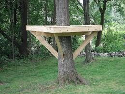gorgeous basic tree house plans plan beautiful