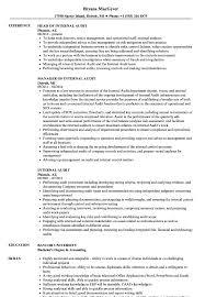 Auditor Job Description Resumes Internal Auditor Resumes Magdalene Project Org