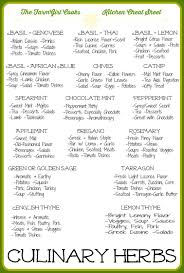 Tfgc Guide To Culinary Herbs Bialas Farms