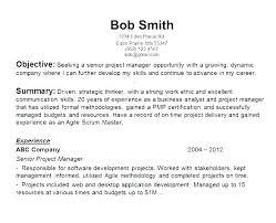It Resume Objectives It Resume Objectives Samples Resume Sample For