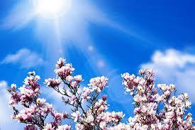 Afbeeldingsresultaat voor spiritueel instroom mooie energie