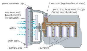 stock illustration typical gasoline engine cooling system typical gasoline engine cooling system