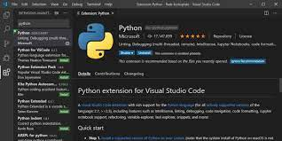 setting up python worke in visual