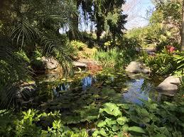 pond located inside the san go botanical gardens encinitas
