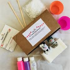 diy soap making kit makes 2 soaps