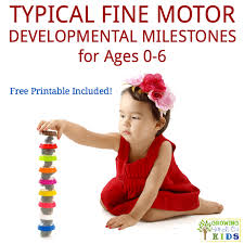 Reading Developmental Milestones Chart Typical Fine Motor Developmental Milestones For Ages 0 6