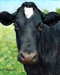 dairy cow face. Exellent Cow Black Cow With Star Art Print By Dottie Dracos Throughout Dairy Face A