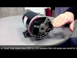 hayward super pump wiring diagram 115v hayward how to convert an inground pool pump motor from 230v to 115v on hayward super