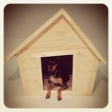 crooked dog house plans luxury ana white