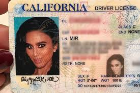 How Photo Actually Driver 's Look To Make Your License Good rqxwfr1