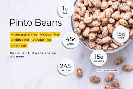 Legumes Protein Content Chart Pinto Beans Nutrition Facts Calories Carbs And Health