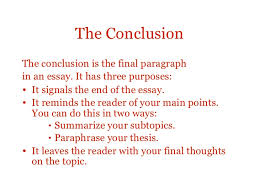 essay structure  7 the conclusionthe conclusion