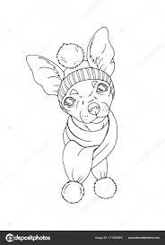 Portret Van De Hond In De Muts En Sjaal Stockvector Minyanna