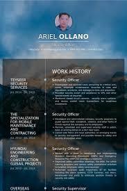 security officer resume samples information system officer resume