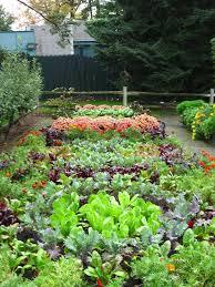 best 15 vegetable garden design ideas