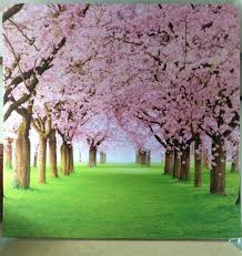 Cherry Blossom Backdrop Cherry Blossoms Backdrop Double Sided