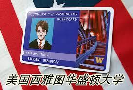 Personality Entertainment Seattle Card Id American Student Washington Props University Identity