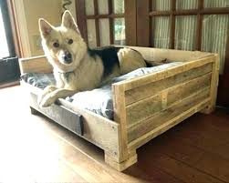 diy outdoor dog bed raised dog bed pet outdoor elevated beds furniture wooden with regarding large