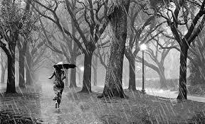 """Résultat de recherche d'images pour """"gif journée de pluie"""""""