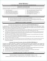 Technology Architect Resume Managing Assignments University Survival