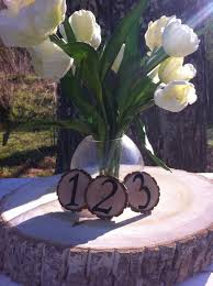 table number rustic wedding wood tree slices decor sourwood disc tree log round