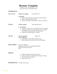Sample Of Chronological Resume Format With Example Of A Simple