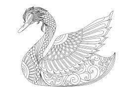 Small Picture Swan Adult Free Coloring Page Adults Animals Coloring Pages